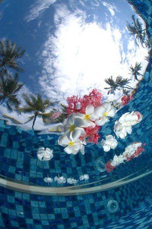 Jason Heller Photography: Underwater Photography, Travel & Lifestyle Photography
